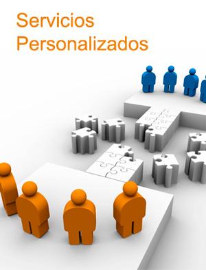 Servicios Personalizados de Asesoría
